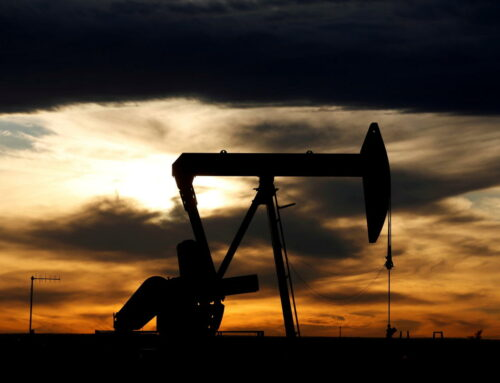 What are the types of FEDERAL OIL and GAS LEASES?
